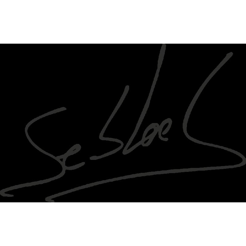 Sticker Sebastien Loeb